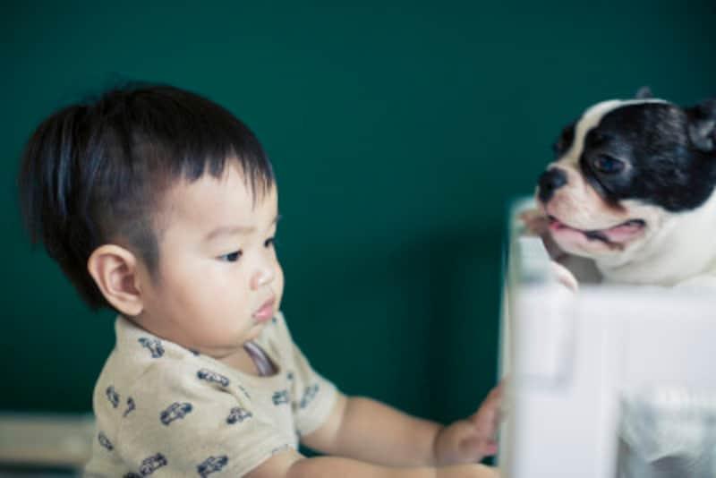 親が犬と子ども、両方を守り、お互いについて教えてあげることで、かけがえのない友達になることができる