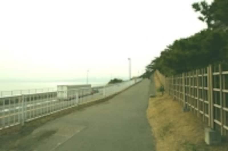 こゆるぎ緑地