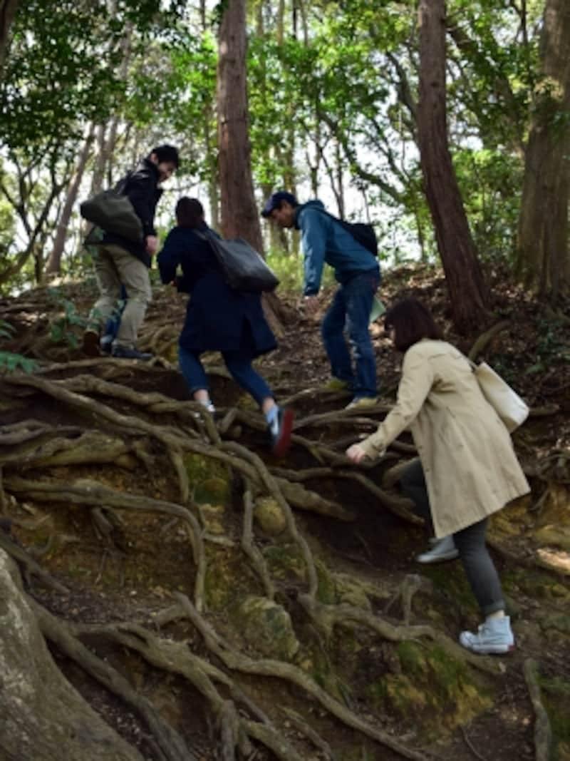 鎌倉で、こんなに大変な山道を登るとは!