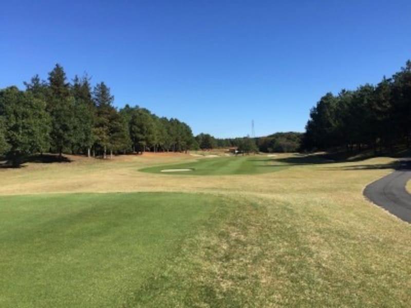 ゴルフはスポーツとして、努力やアイディアを実践することの大切さを学ぶことができる