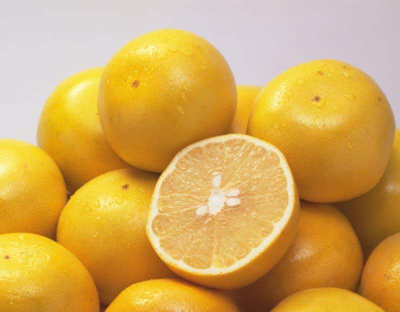 脂っこい食事のときは、意識してグレープフルーツを食べています。これがガイドのスリム維持のヒミツ