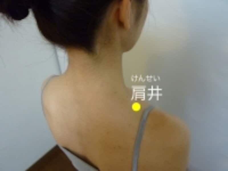 肩井(けんせい):肩の上、筋肉の一番もりあがったところ