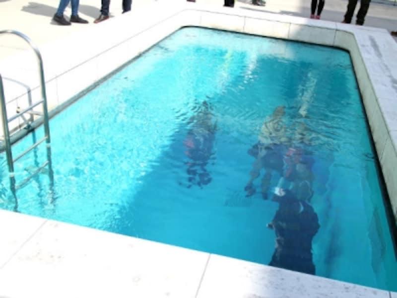 レアンドのプール上