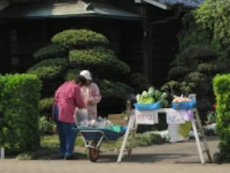 軒先で野菜販売