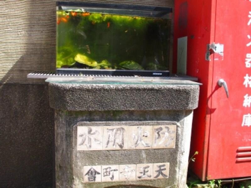 今は金魚が泳ぐ水槽が置かれている