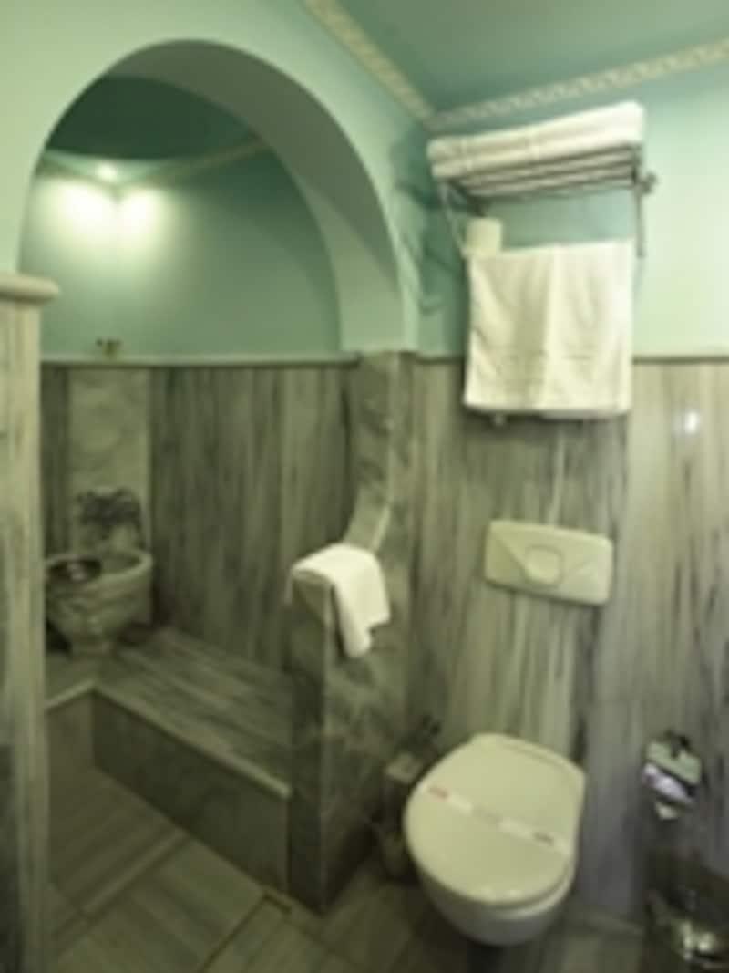 こんな風に、トルコハマム式シャワールームのあるぷちホテルも(スルタンアフメットパレス)