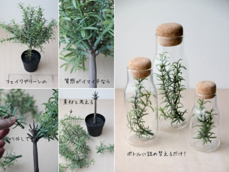 小さな観葉植物をテラリウム風に楽しむ3つの方法