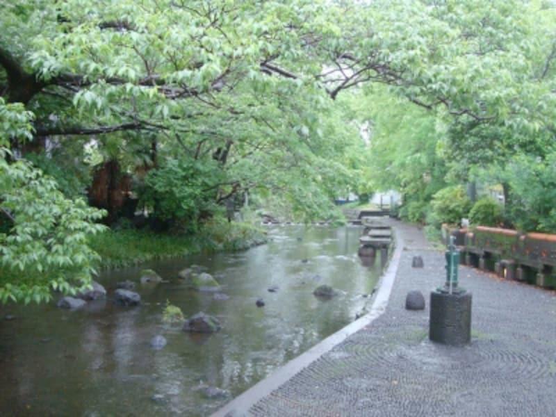 水の都三島の名水