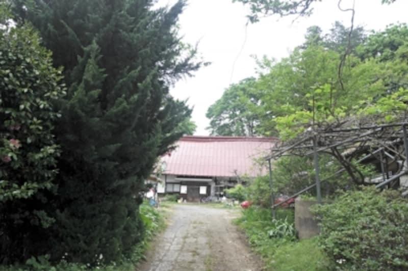 奥に見えるのが、藁葺き屋根だったという築100年を越える母屋