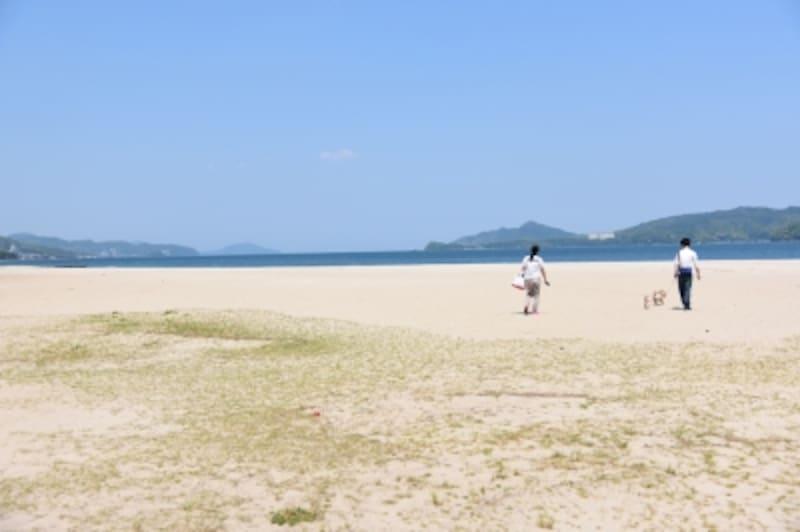 驚くほど美しい砂浜と、透き通った海