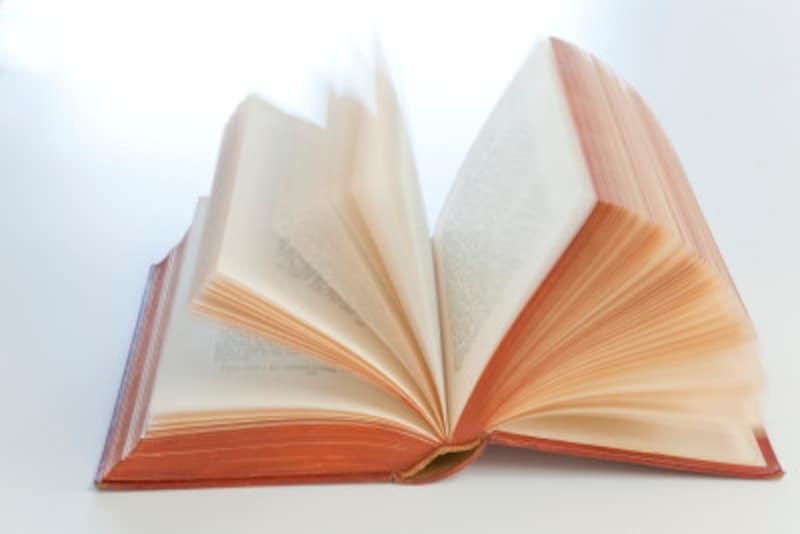 スペイン語学習におすすめの紙辞書・オンライン辞書4選