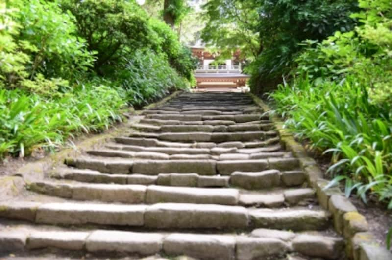 浄智寺のすり減った鎌倉石の石段
