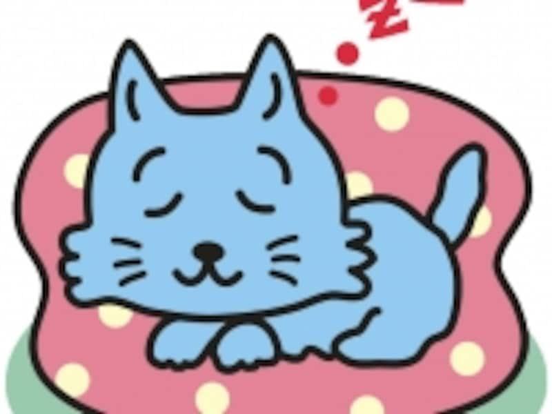 世界一有名な猫undefined「ソックス」