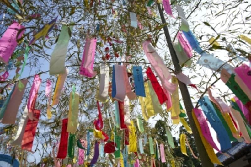 笹飾り・七夕飾り 意味・種類・由来…短冊でNGな願い事とは?