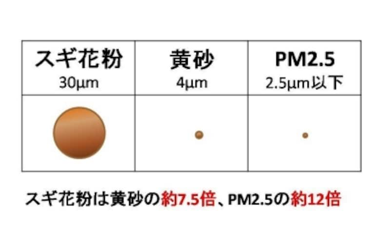 【図1】花粉、黄砂、PM2.5の大きさ比べ