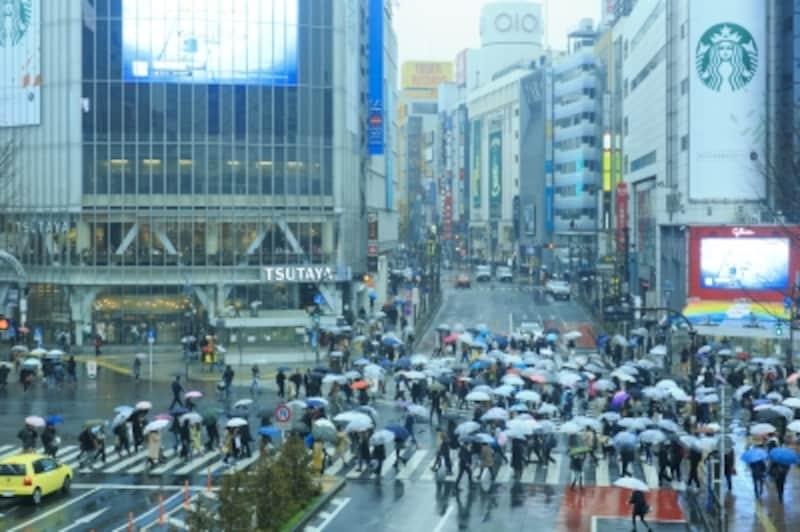 渋谷スクランブル交差点、雨の風景