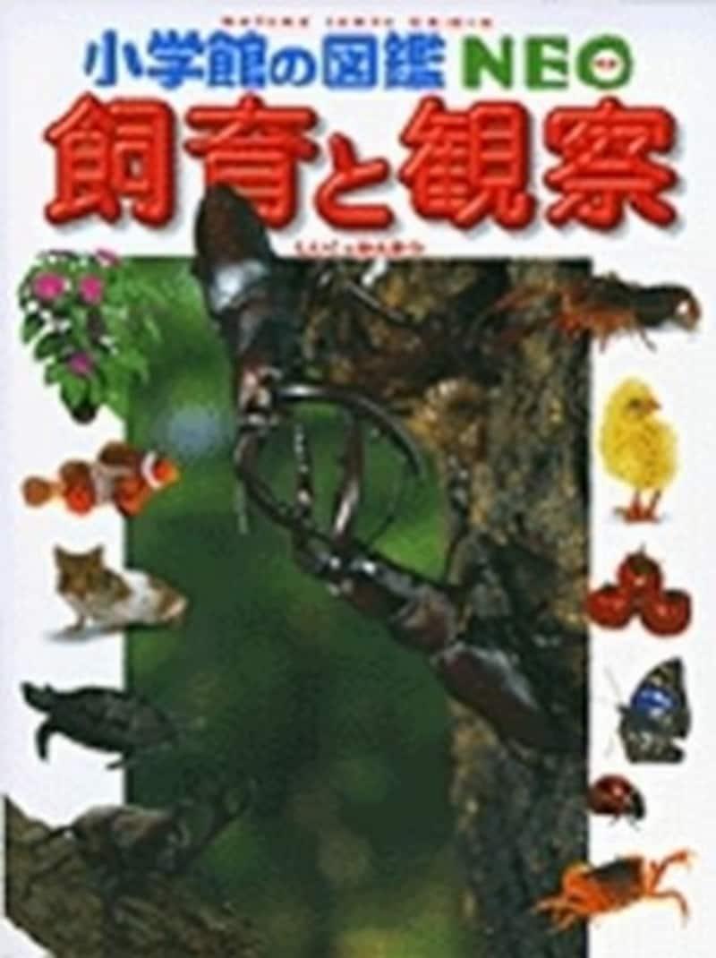 『飼育と観察』(小学館の図鑑NEO)