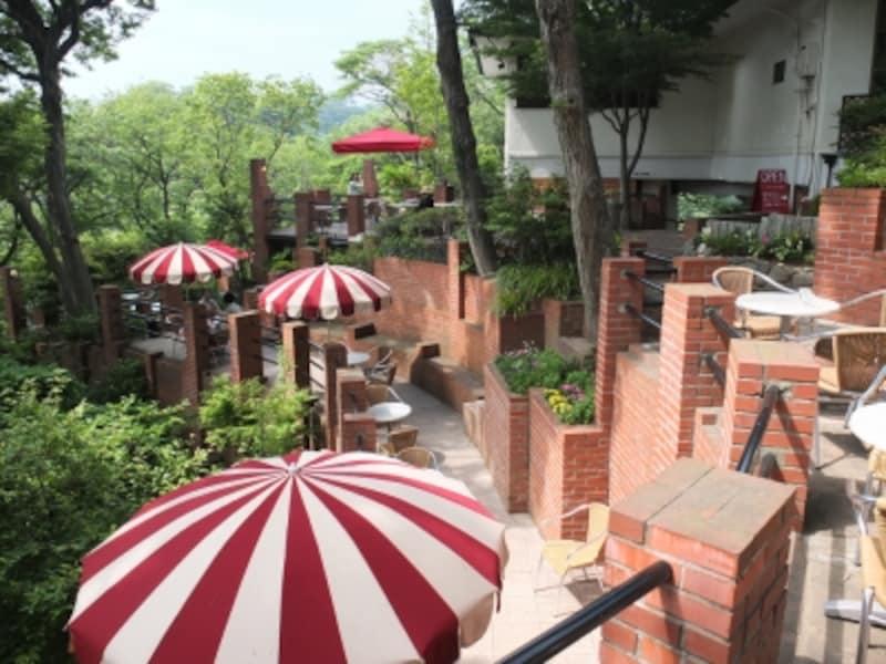 「リアル・ラピュタ」ともいわれる『カフェテラスundefined樹ガーデン』