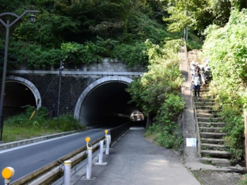 ハイキングコースは、大仏坂トンネル脇の階段で終点に!