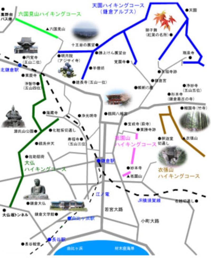 葛原ヶ岡(くずはらがおか)・大仏ハイキングコースは濃いグリーンのルート 出典:鎌倉紀行