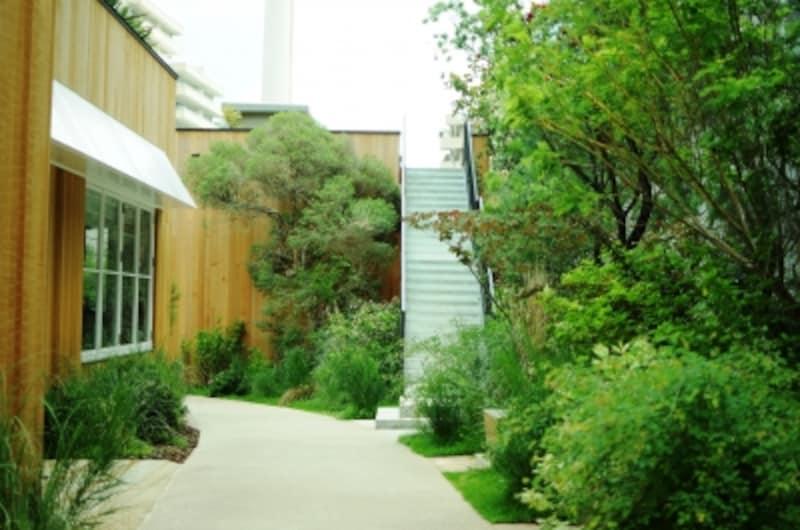 緑の小道から、ルーフトップにあがる階段