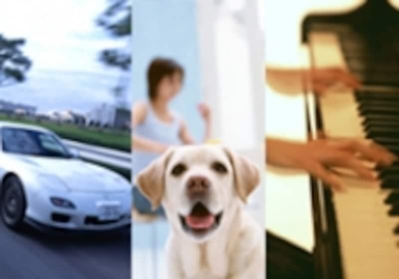 車、ペット、音楽などコンセプトもさまざま