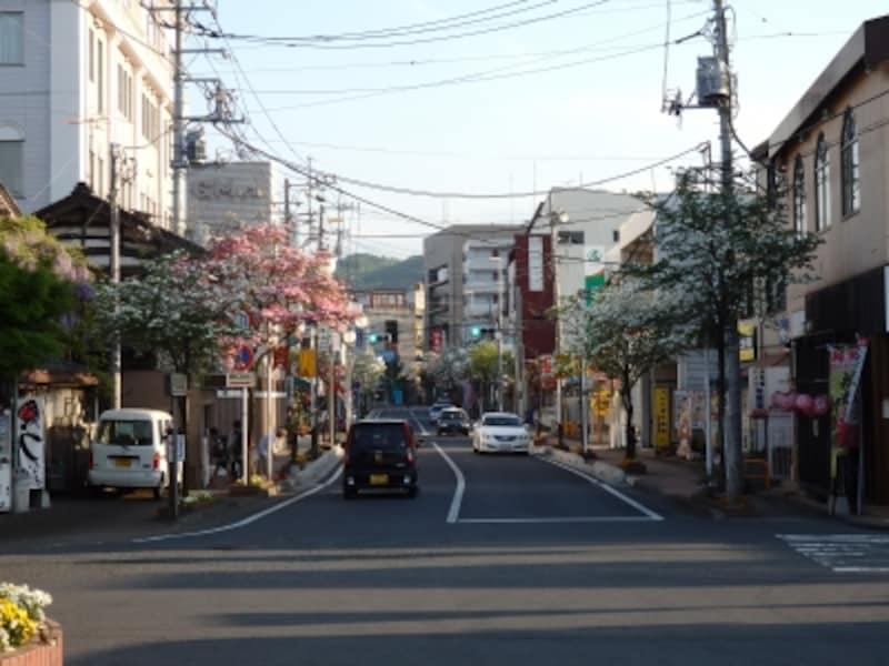 東武東上線の小川町駅から伸びる花水木通り