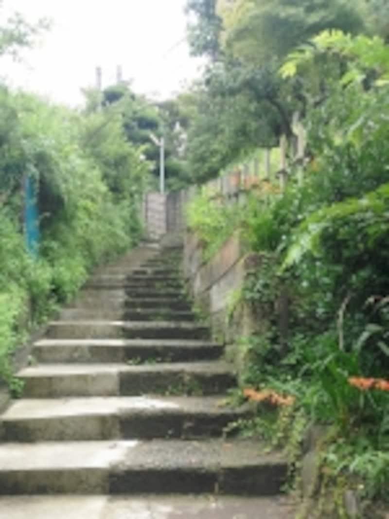 商店街からはこの階段を上って家に戻る。風情のある階段なのだが……。