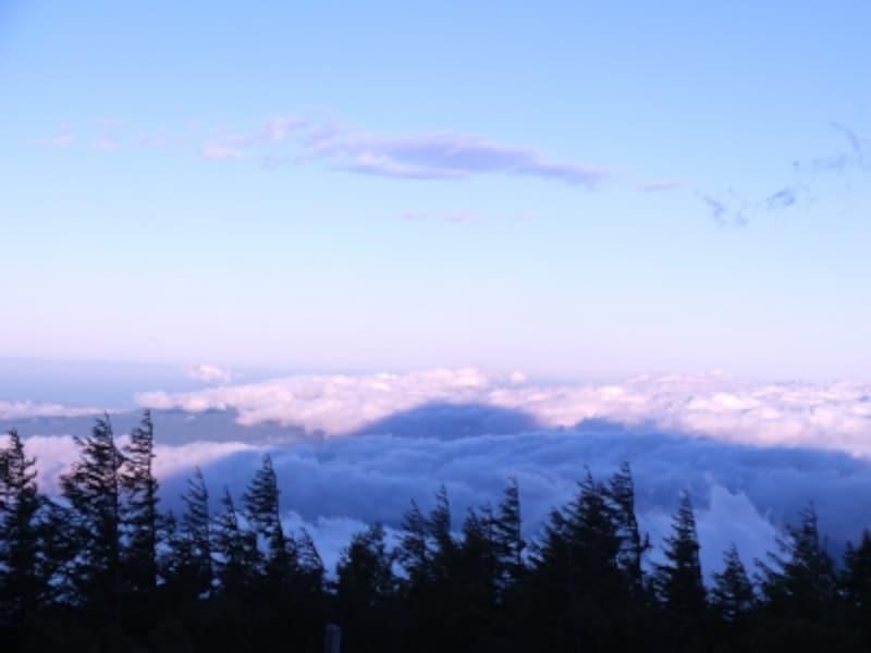 一面に広がる雲海の上に投影された「影富士」