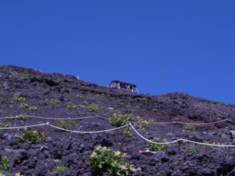 下から山小屋が見えるので、目標に!