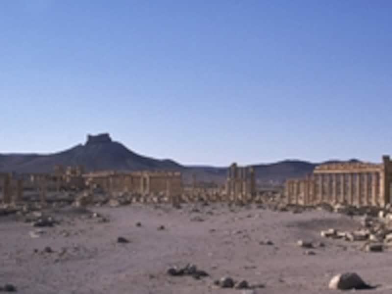 パルミラの列柱つき大通り、全景。左の小山がアラブ城砦©牧哲雄
