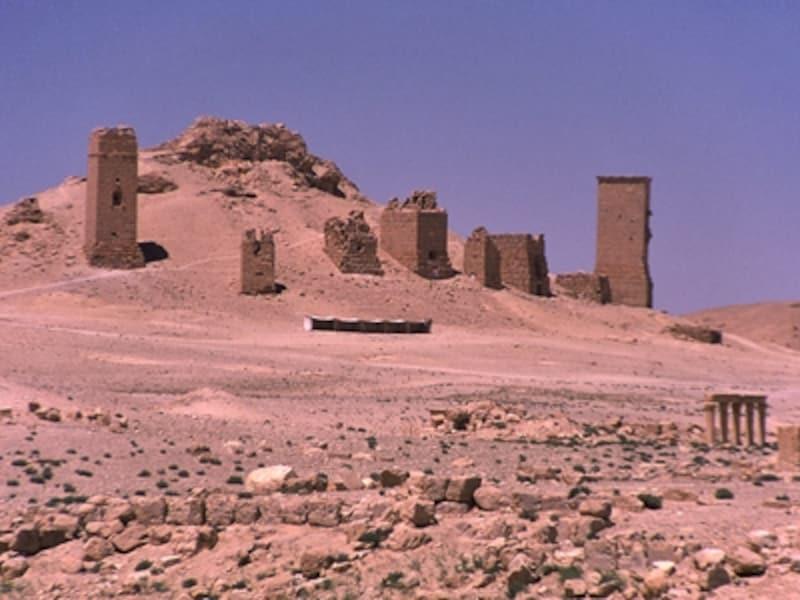 墓の谷にある塔墓群。塔墓は3~4階建てで地下室もあり、大きいものは百数十の石棺を収めている©牧哲雄