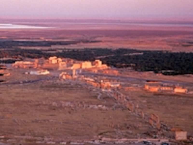 アラブ城砦から見たパルミラ全景。遺跡の周囲をヤシの林が取り囲んでいる。商人たちはこの景色を目指して死の砂漠を渡った