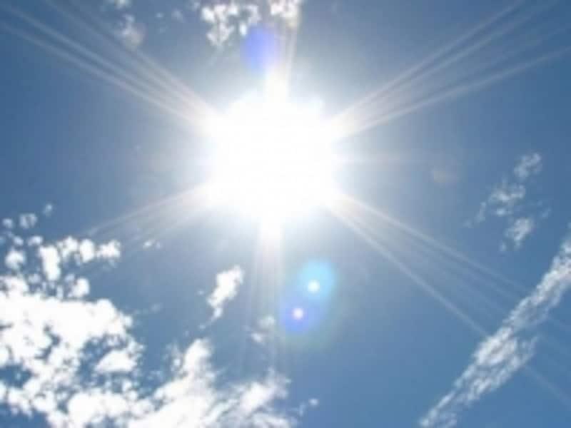 夏はハツラツとしたイメージがありますが、不調を起こしやすい季節でもあります