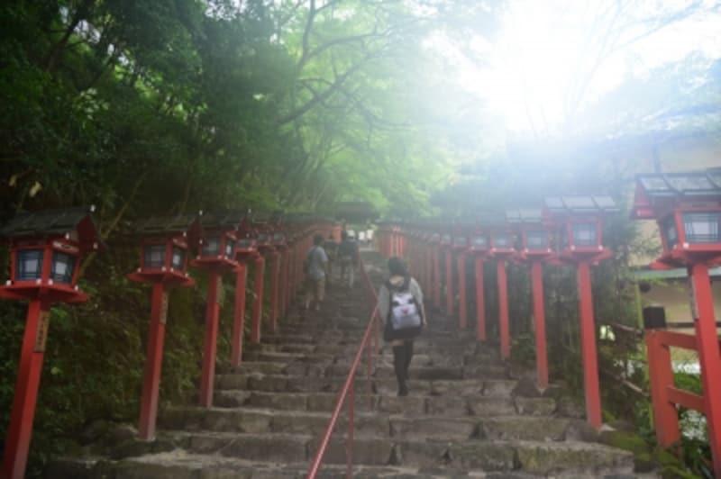 雨上がりの幻想的な貴船神社参道。夕刻には灯篭に明かりが点る