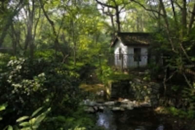 不便な場所にある小さなお家でも、見る人によっては魅力的かも(c)DiegoCambiaso