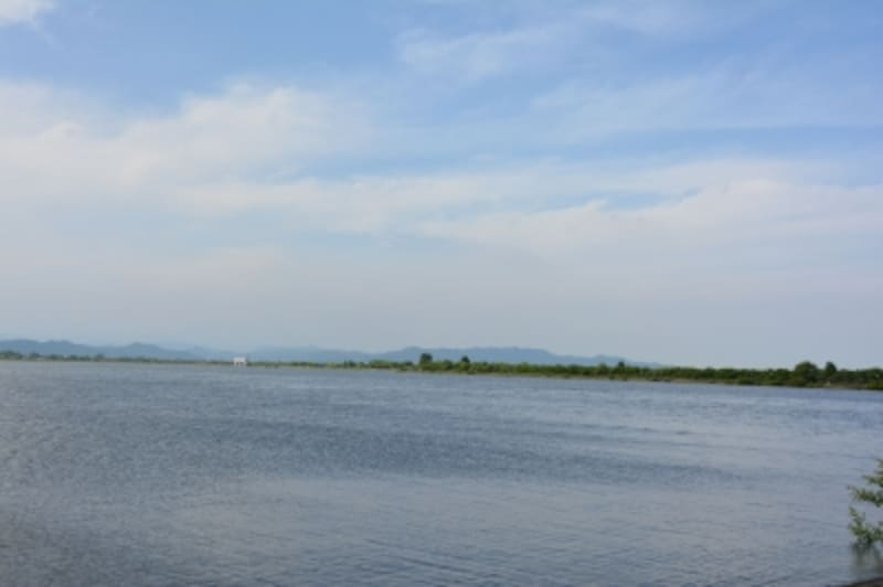 ラムサール条約に登録された渡良瀬遊水地