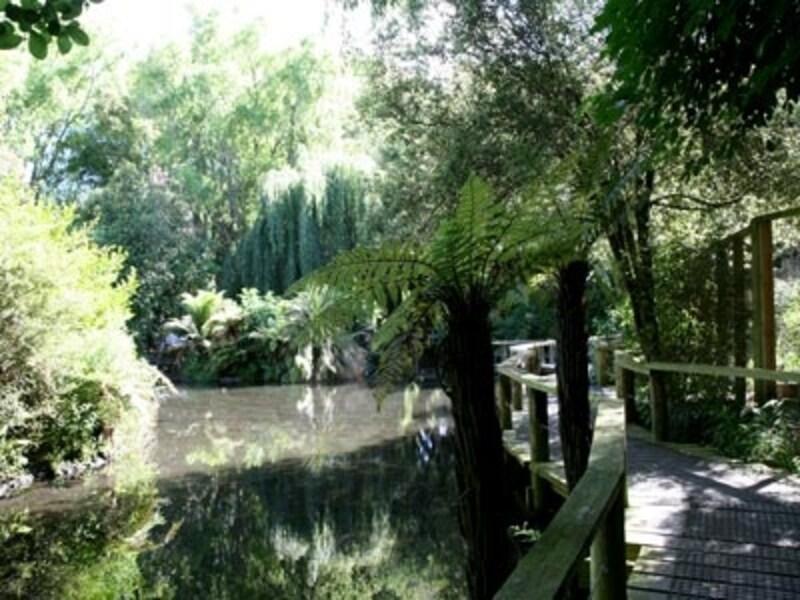 緑豊かな園内は歩くだけでも癒される!