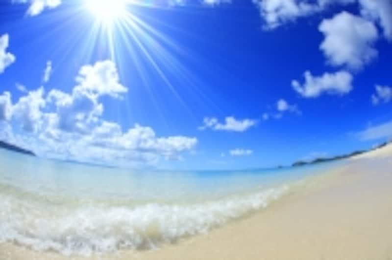 波の音・自然音