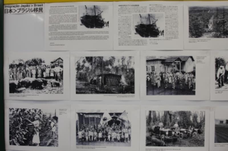 ブラジル移民展示2