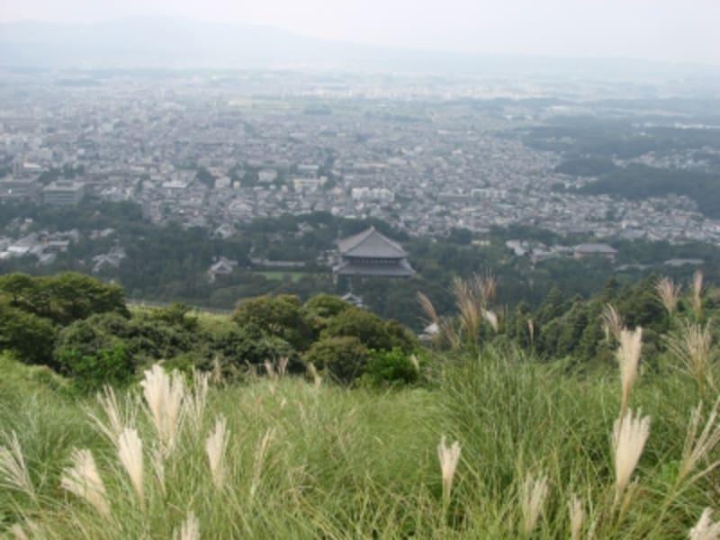 若草山からの眺望。東大寺の大仏殿が小さく見える