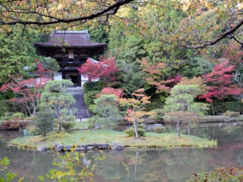 周囲の紅葉が色付きはじめた、円成寺の浄土式庭園(2014年10月下旬撮影)