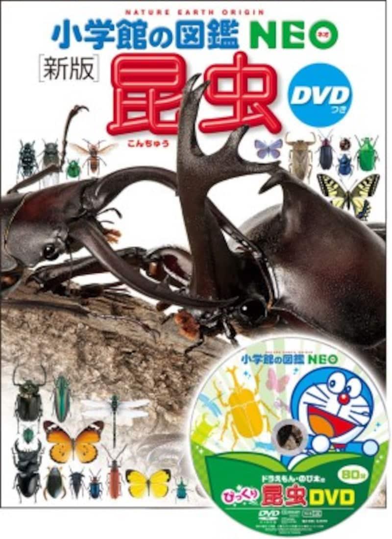 小学生の図鑑ランキング第2位『新版昆虫』(小学館の図鑑NEO)