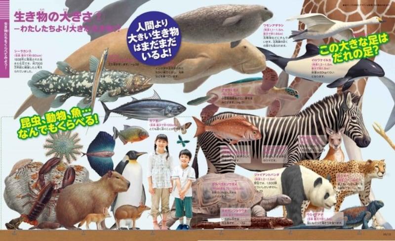 小学生の図鑑ランキング第4位『新版くらべる図鑑』(小学館の図鑑NEO+)
