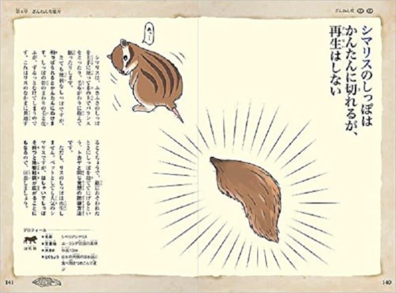 小学生の図鑑ランキング第1位『おもしろい!進化のふしぎざんねんないきもの事典』