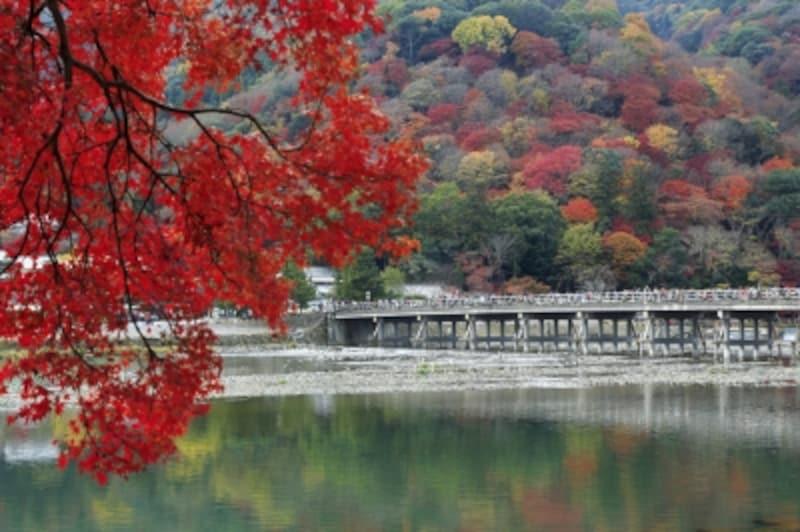 嵐山のシンボル「渡月橋」と紅葉