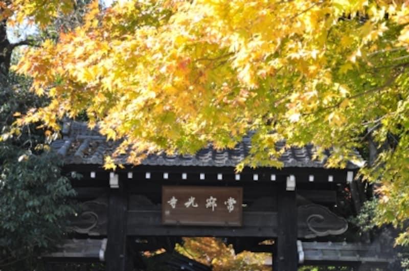 紅葉の名所、常寂光寺の山門