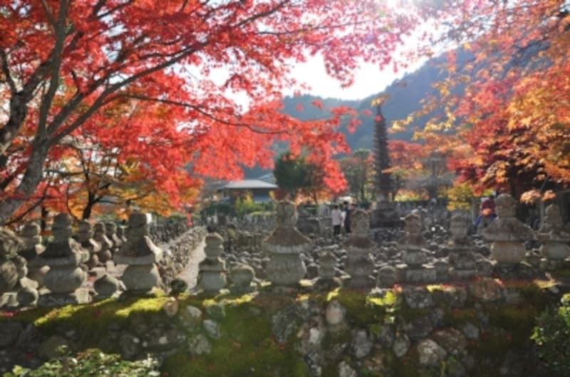 化野念仏寺は、紅葉の穴場スポット