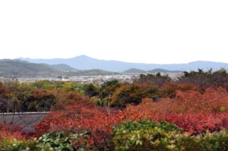 「大河内山荘」庭園からの眺望