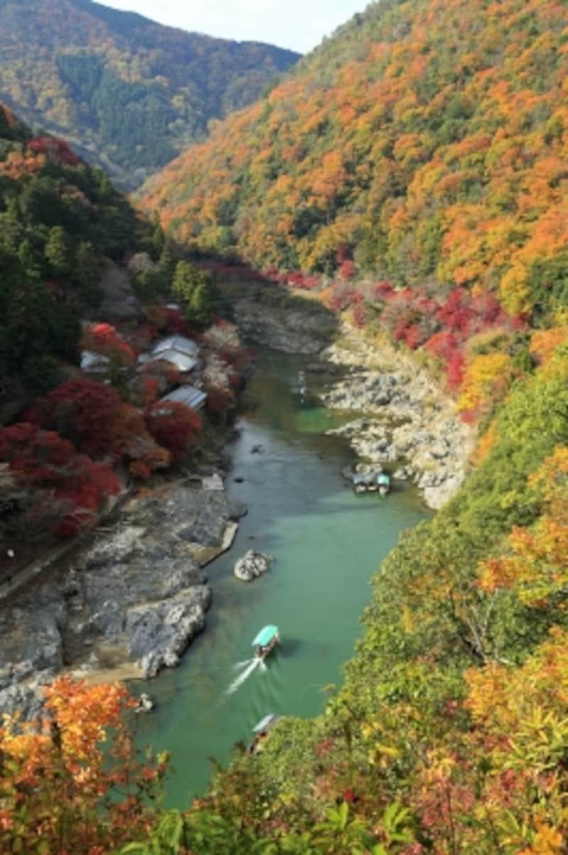 亀山公園展望台から眺めた保津川の紅葉